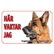 Hundskylt Tysk Schäferhund