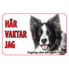 Hundskylt Border Collie